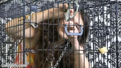 Anahí caged